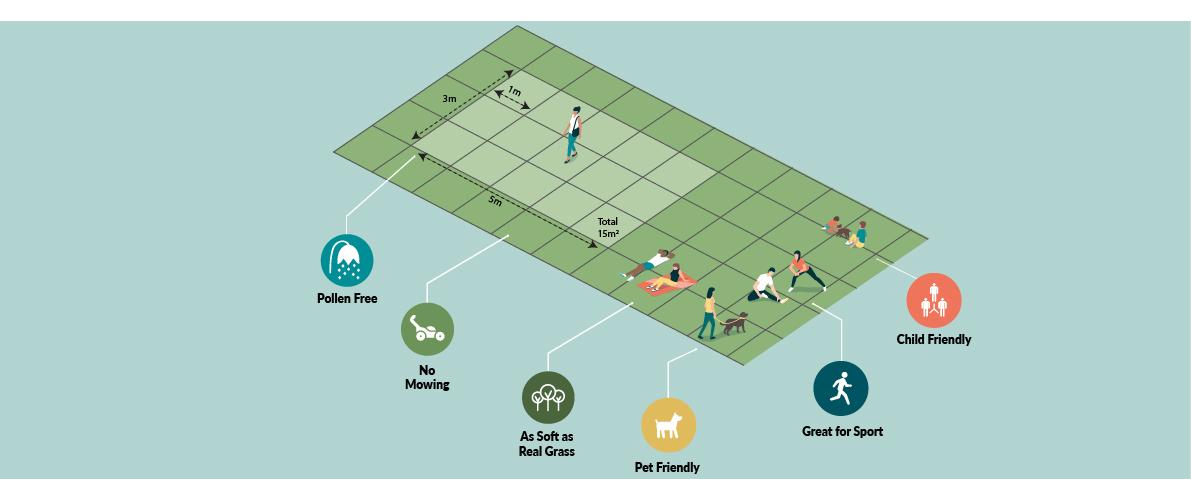 grass-explained-1.jpg